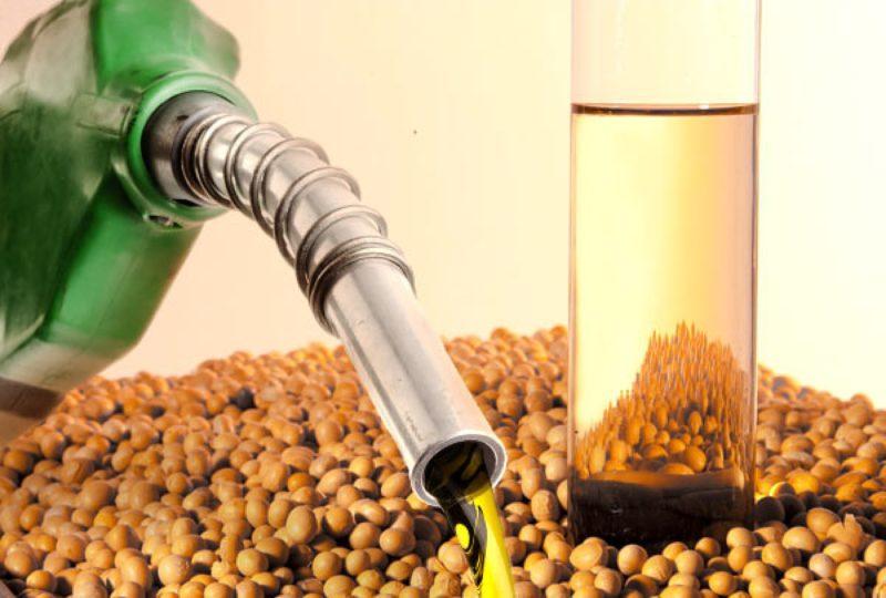 Resultado de imagem para biodiesel
